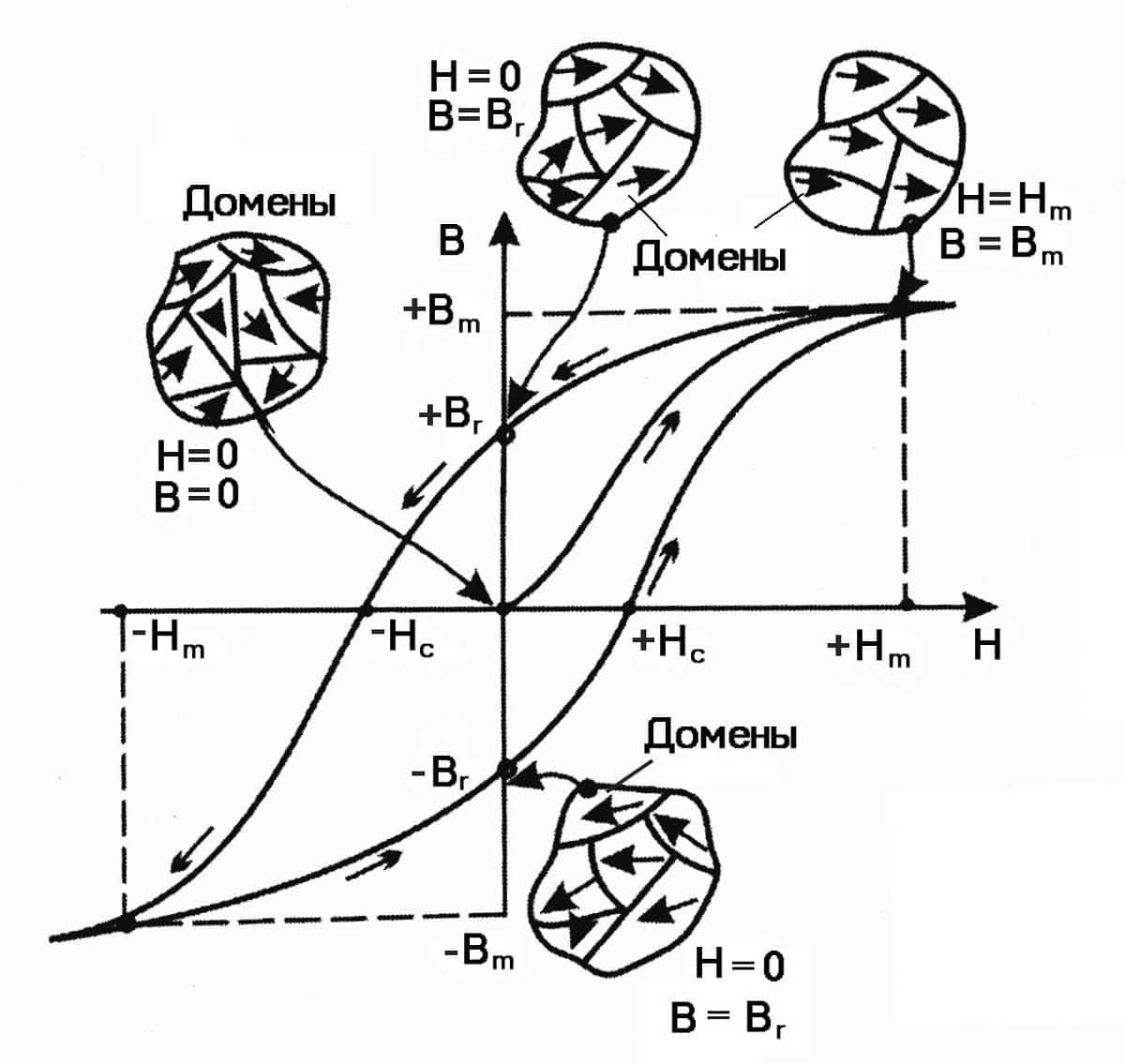 Механизм возникновения петли магнитного гистерезиса