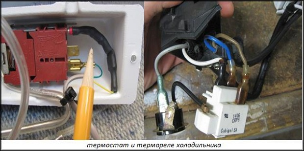 термостат и термореле