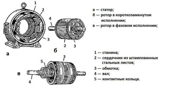 Статор и ротор асинхронного двигателя
